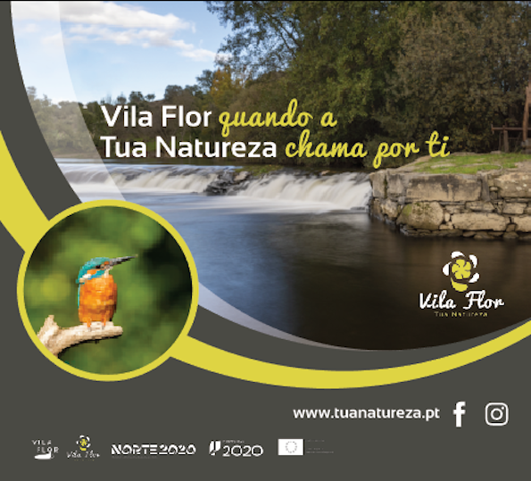 Tua Vila Flor