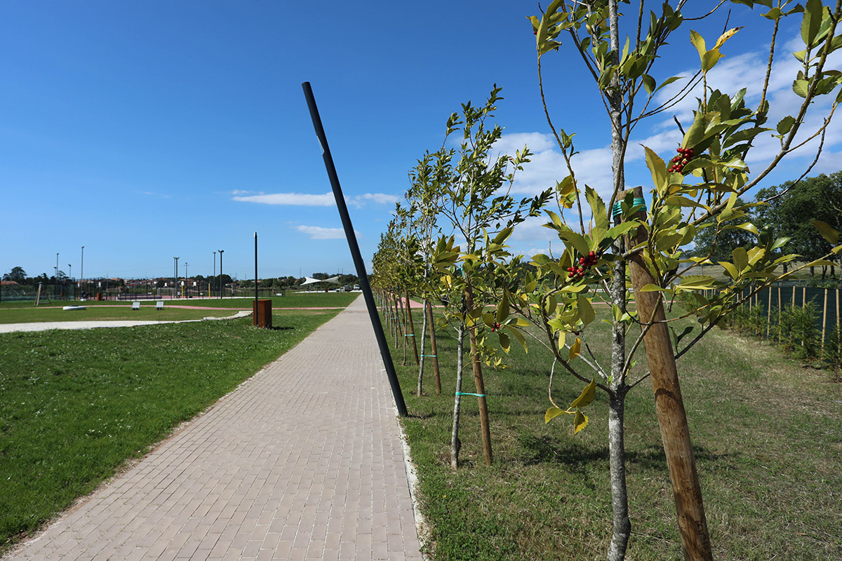 parque urbano de Anadia